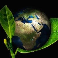 Sustainable_thumb